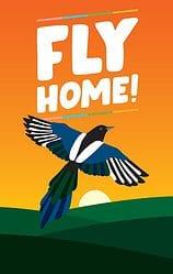 Fly Home! spel doos box Spellenbunker.nl